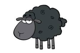 LIMS Customization - Black Sheep