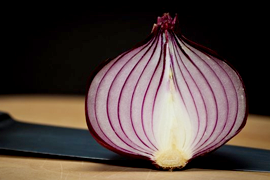 Layer of an Onion