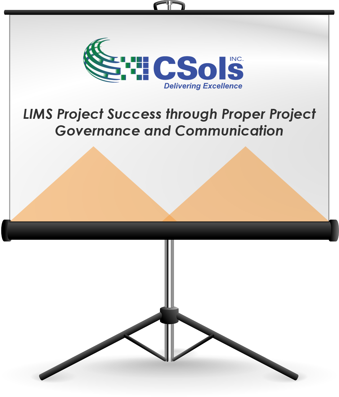 LIMS Project Success through Proper Planning Governance and Communication