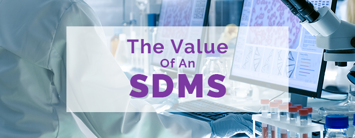 Value of an SDMS